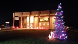 Roxy with Christmas tree
