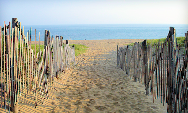 Beach Pass Program