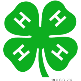 4-H Babysitting Course Nov 10