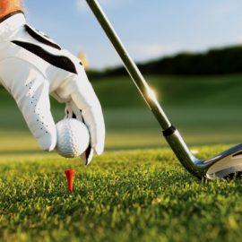 Falcon Golf Course:  Demo Day June 4th