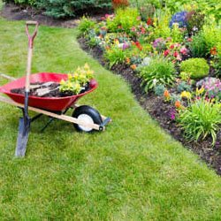 Ready for your Springtime Yardwork?